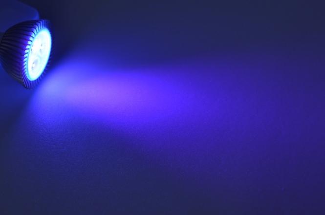 GU5.3 LED-Spot MR16 51 Lumen Gleichstrom 10-30V DC ultraviolett 3,5W
